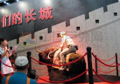 亚洲户外展骑黑牦牛比赛