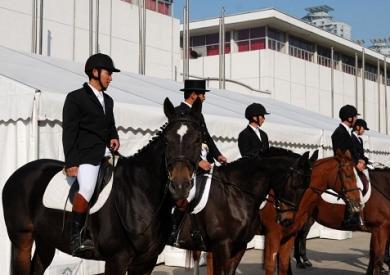 马业马术展11月北京开幕