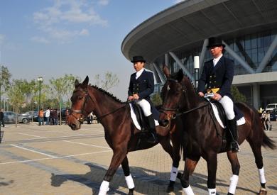 中国马业马术展11月3日闭幕
