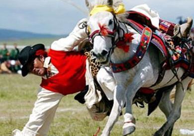 走走走~奔向西藏大攻略