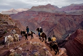 Walking Into the Earth's Heart: The Grand Canyon