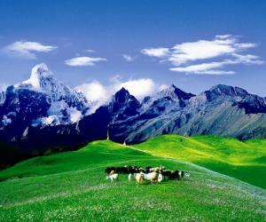 四姑娘山风景