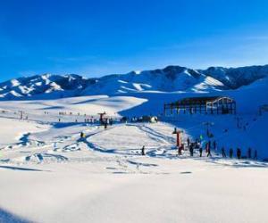中日俄三方友城滑雪场交流大会在哈尔滨召开