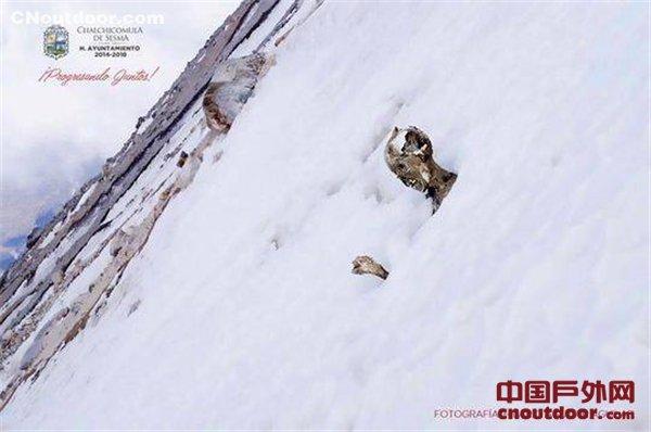 冰封59年3名遇难登山客终回家 81岁队友:这是种解脱