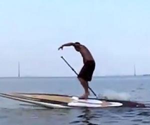 倒霉!美海域游客滑冲浪板被疯狂海牛掀翻落水