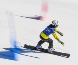 中国留学生在日滑雪失联后获救 华人吁提高安全意识